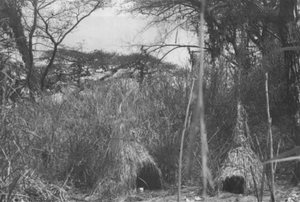 Mbote Bembe shrines nature spirits number 99 1950